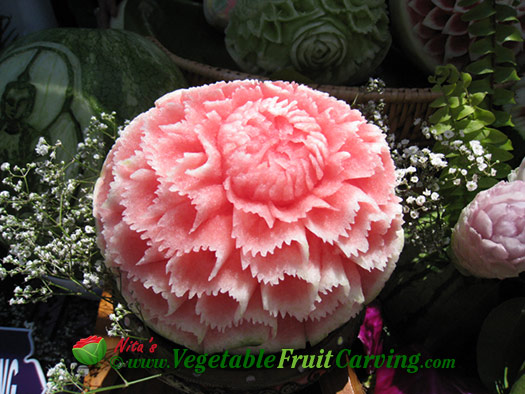 Wavy Zig-zag petaled watermelon