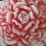 Curled edged watermelon roses by Nita close up