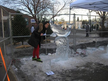 Dolphin Ice Carving Edmonton