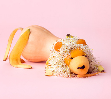 Fun food art with butternut squash and banana peel by Carl Kleiner