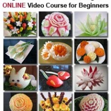 101 Course for Beginners