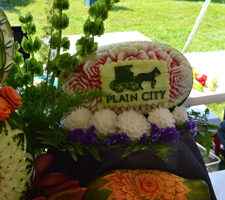Fruit and Vegetable Competition in Plain City, Ohio