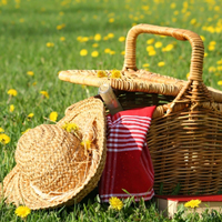 picnic ideas for August picnic month