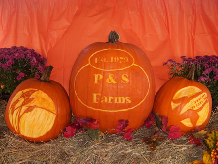logo pumpkins for farm celebration