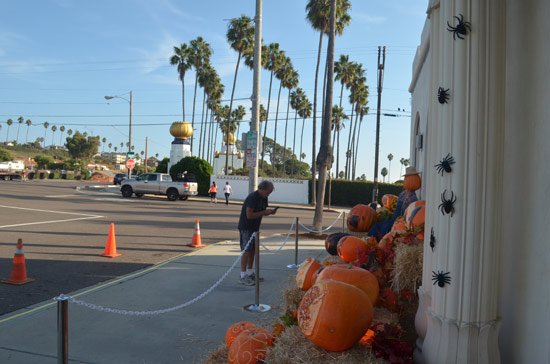 Some of the best and biggest pumpkin in the whole downtown Encinitas event can often be found closest to the Self Realization Fellowship. Even during the day, the cameras start coming out.