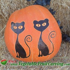 cats-pumpkin