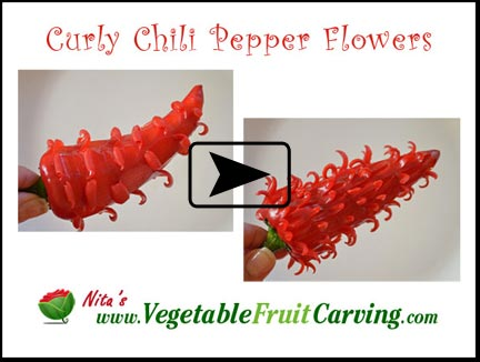 Click to go to chili flower video lesson