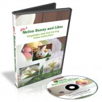 Melon Bunny and Lilies Video Lessons are lesson set #3 in the 101 Course.