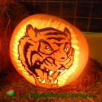 Tiger Halloween pumpkin