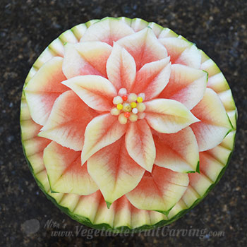 watermelon poinsettia top view