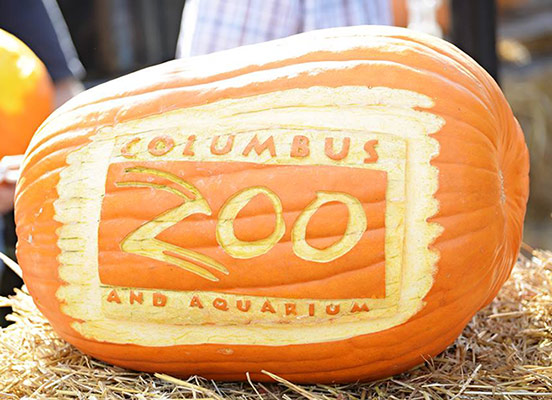 columbus zoo pumpkin carving