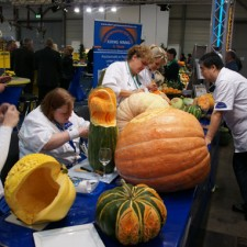 carving-competition