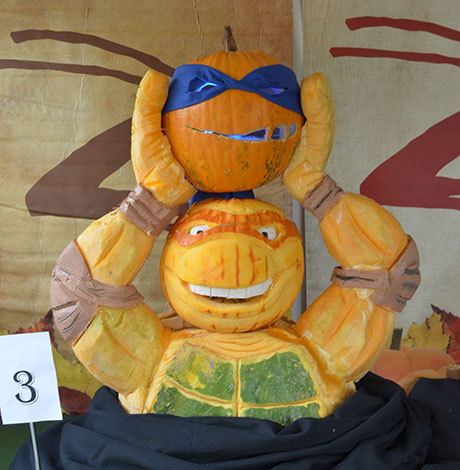 Teenage Mutant Ninja Turtles pumpkins
