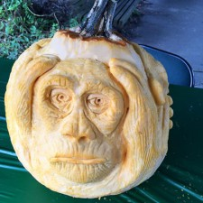 Hear no evil pumpkin