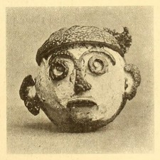 ornamental orange peel face