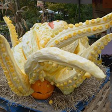 pumpkin octopus sea monster by jon Michaels