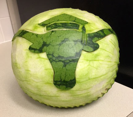 University of Texas Mascot wearing graduation cap carved onto watermelon