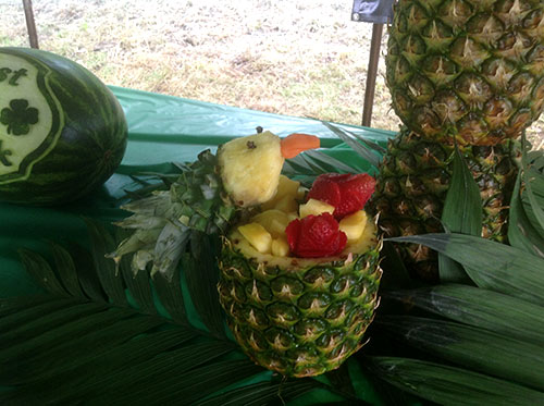 Pineapple parrot by Cindy