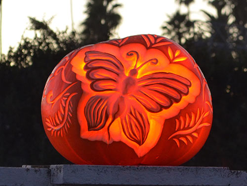 Butterfly carved pumpkin