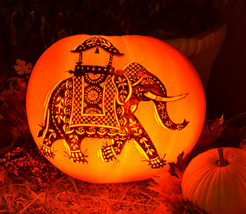 64 carved pumpkins for halloween nita 39 s fruit and for How to carve an elephant on a pumpkin