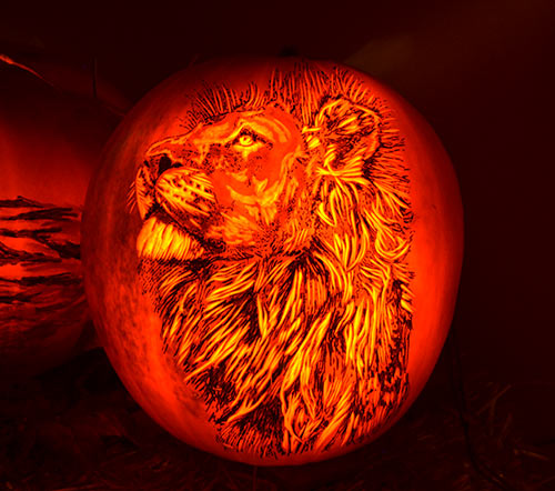 0316_lion-pumpkin-2015