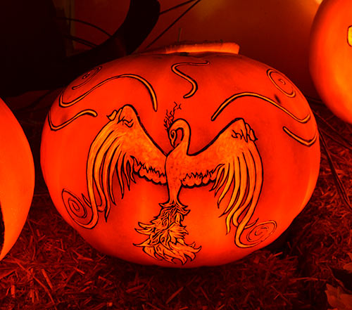 0321_pheonix-bird-pumpkin-2015