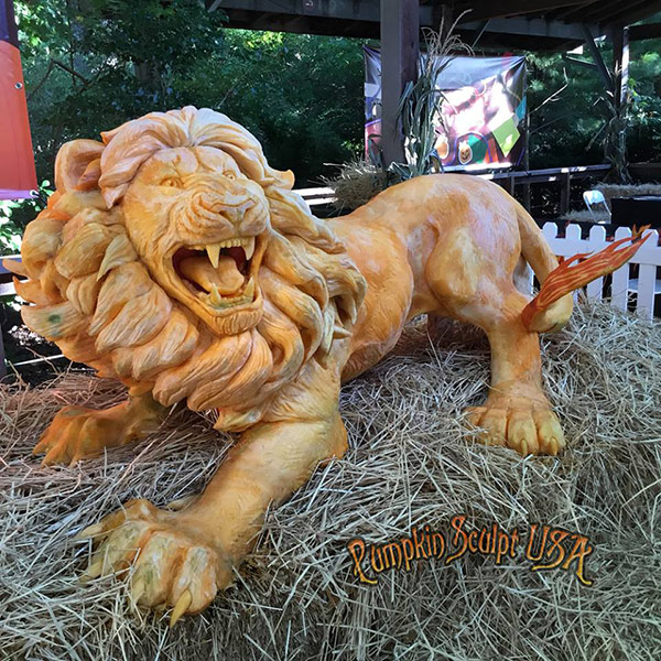 Lion pumpkin sculpture