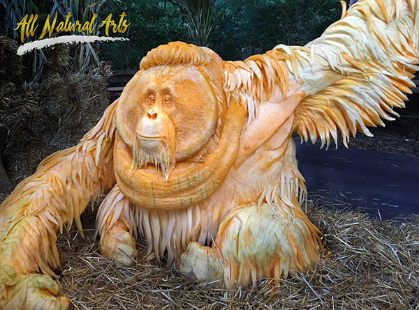 3/4 view of Orangutan by Pumpkin Sculpt USA