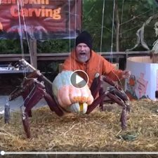 moving pumpkin spider with Andy Gertler