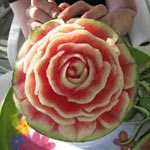 Garnita's 1st Watermelon Rose