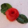 tomato rose by Pam Parish